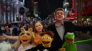 muppets40